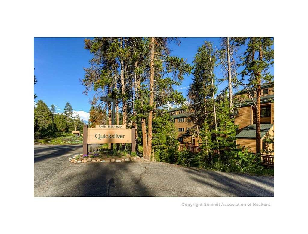 quicksilver condos for sale keystone co